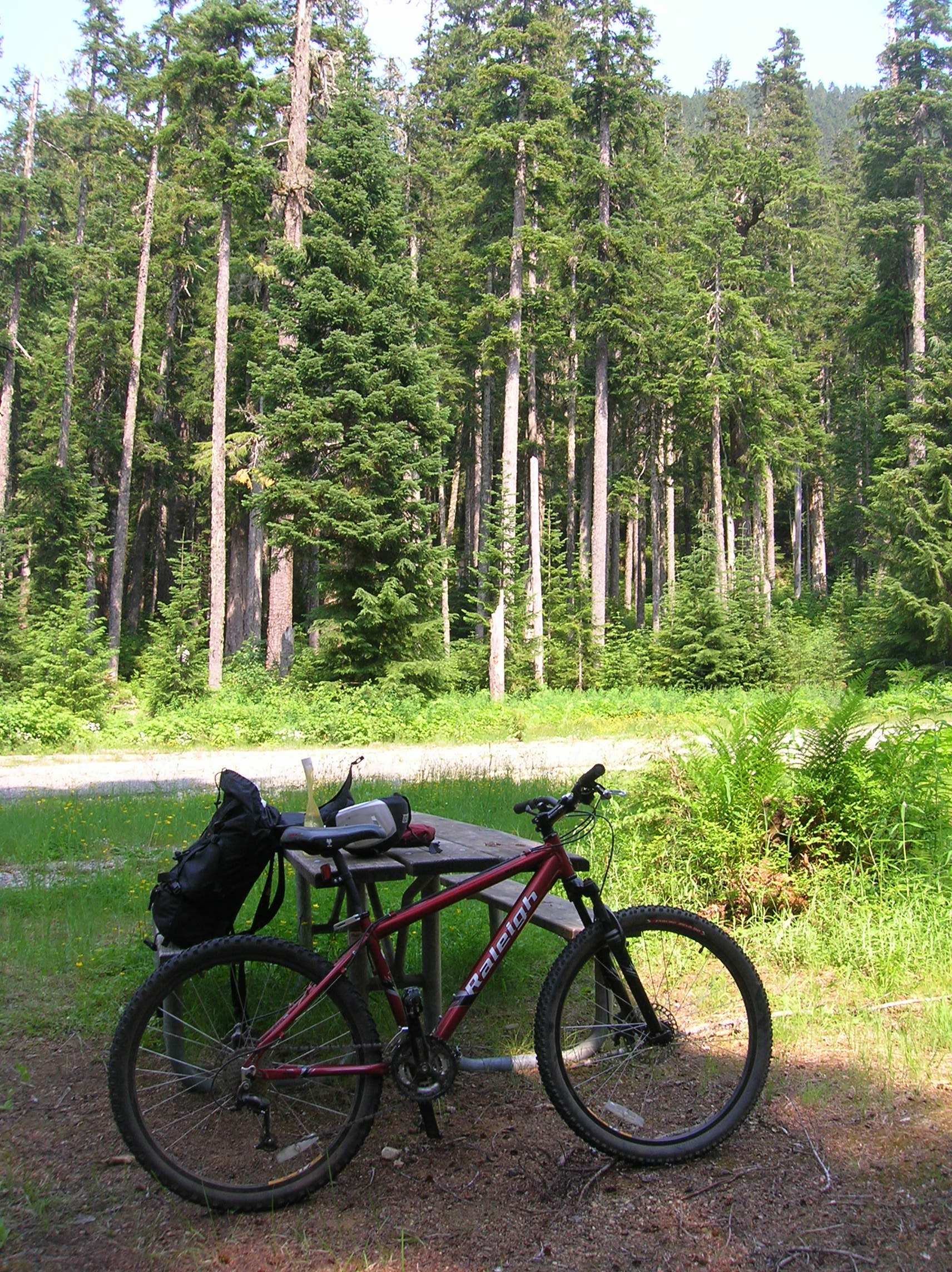 Biking in the Mount Baker-Snoqualmie National Forest