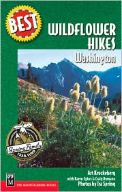 Best Hikes with Wildflowers